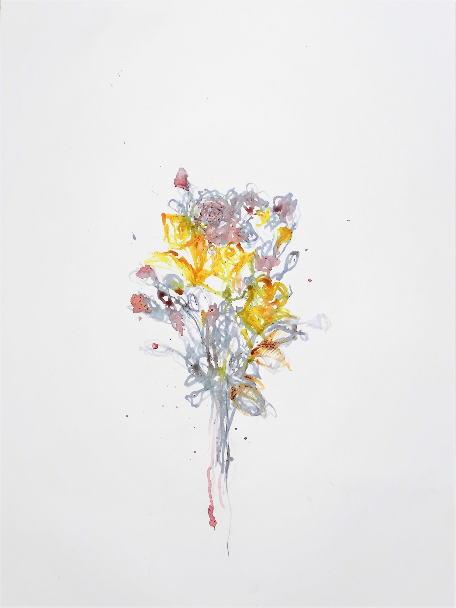Flowers & Landscapes